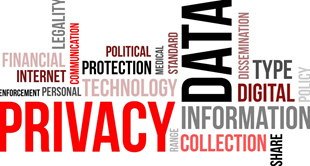 Data risk assessments are designed to help protect data privacy