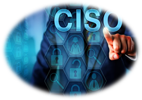 The Chief Information Security Officer in any organization has many responsibilities.